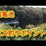 ブラックバス釣りポイント 銭亀池 知多野池 愛知県バス釣り場