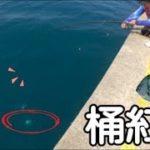 [磯釣沉底] 釣大魚桶的最強…雀鯛活餌桶紅甘篇 2019/12/台灣69J釣魚俱樂部(69J Fishing Club)