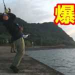 秋の堤防でライトショアジギングが最高に楽しい!!【釣りせんばコラボ】