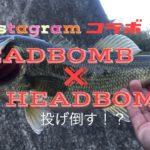 【冬のバス釣り】桑野川でコラボフィッシングしてみた♪