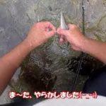 高見川で鮎釣り!!超楽しくて最高でした❗️