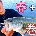 【バス釣り】五三川で春を感じる!?