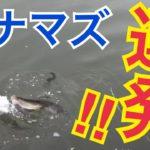 ナマズ連発!自作ルアーでニーチャン川釣りに挑戦!第2話