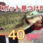 ただ巻物で釣れた動画ど素人遠賀川攻略ぷろじぇくと【40.5get】