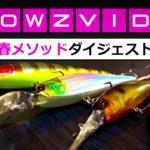 【春のバス釣り】ダウズビドーはこうやって使うと5倍釣れる!