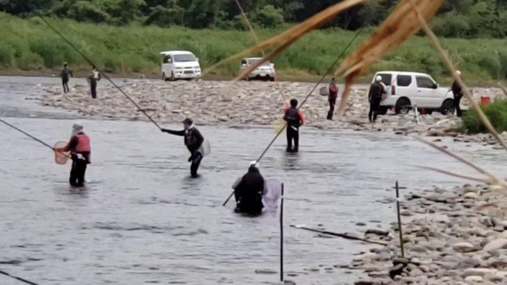 鬼怒川の鮎釣り、、