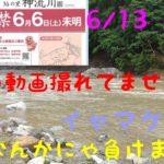 6/13 鮎釣り 南甘 神流川 鮎解禁後 こんな天気普通ヤラン。