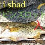 [バス釣り] i x i shadでニューロッドに入魂一発!in カリフォルニア (Dobyns Fury series rod 705 CB) SoCal fishing
