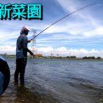 海釣免費練習場,人插水中釣,底下竟躲藏大物!