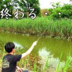 田舎の小さな川でのんびり釣りを楽しむ