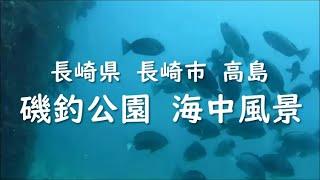 長崎県 長崎市 高島 磯釣公園 海中風景