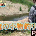 【川釣り】清流の小物つりPart2