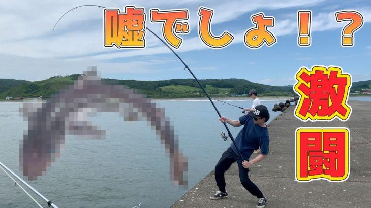【奇跡】堤防釣りでまさかの大物釣り上げた。【あつ森】【初心者】