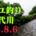 米代川で鮎釣り -秋田県鹿角地区- 2020.8.6