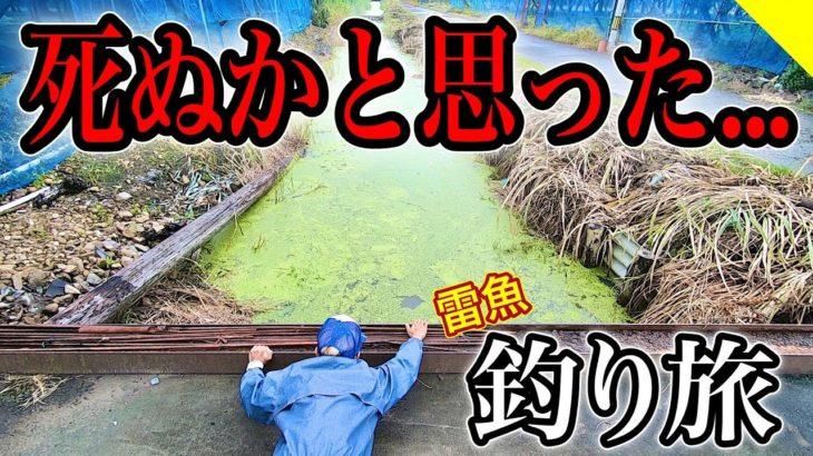 絶対に真似してはいけない雷魚釣り旅5日間【川釣りツアー編】