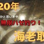 【2020年】海老取川でハゼ釣り!【羽田付近の穴場ポイント】