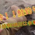 神キタ!!鮭釣り🎣日本海BS川とHR川で争奪戦勃発👍