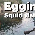 【エギング】涼しくなったので秋イカ釣りしてきた#エギング#Squidfishing#アオリイカ