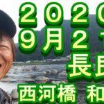 鮎釣り 長良川 2020 小澤剛 友釣り無双