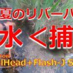 【ブラックバス】FishArrow Flash-J Shad × Mamiya HIS-661ML × DAIWA SPRINTER GL2000