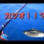 【フカセ釣り】のんびり釣行~張り切りすぎたら釣れないぞ~