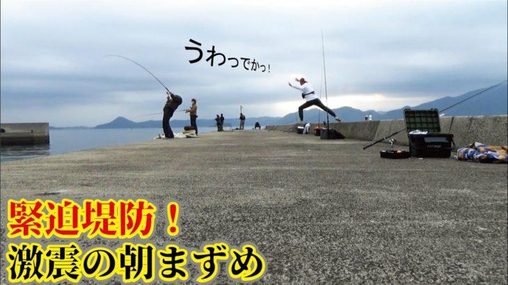 四平 堤防 スギ 釣り
