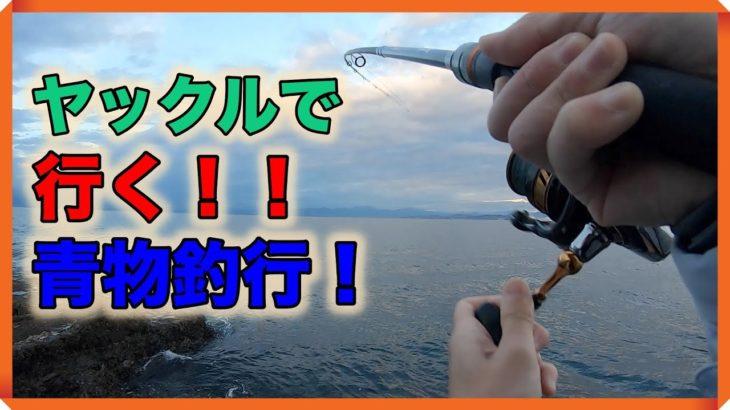 ヤックルで行く!青物釣行!!朝マズメ、一瞬の時合いを見逃さない!!!ライトショアジギング江ノ島裏磯編!!!!