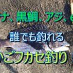 誰でも簡単に釣れる磯釣りを! かごフカセ釣りの紹介 ~ かごを使ったフカセ釣り、フカセ釣りの難しさから解放 ~ 三浦半島  メジナ・黒鯛・アジetc ー かごフカセ磯釣り日記 第1回(No5)ー