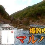 【釣研新製品で地形攻め】三重県島勝浦の沖磯で寒グレ序盤戦!後編