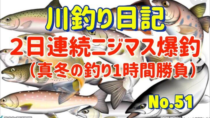 【北海道十勝の川釣り】2日連続ニジマス爆釣【川釣り日記51】