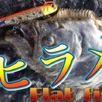 【堤防ヒラメゲーム】お手軽で簡単に狙える!(Flat Fish Game)