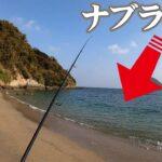 全然期待してなかったけど突然大量の魚が水面で暴れ出したから大チャンス!