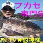 堤防から激安まき餌でチヌ釣り釣行【フカセ釣り専門学校】