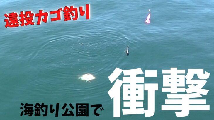 #187【カゴ釣り】自己記録更新!?