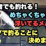 初心者 メバリング メバルプラッキングに挑戦。広島 釣り 釣り場 堤防