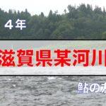 【鮎釣り】滋賀県某河川 鮎の友釣り
