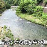 【鮎釣り】 2021年巴川解禁前の橋上流側、下流側のポイント紹介