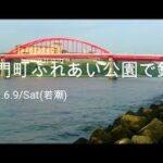 【6月】那珂湊の釣り公園で釣りしたよ