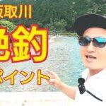 【鮎釣り絶釣ポイント】釣り場案内⑩板取川わらび地区周辺