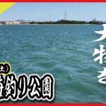 【碧南海釣り公園】【中部電力釣り広場】大物をゲットせよ‼︎ ※愛知県でも数少ない温排水スポットの紹介です。