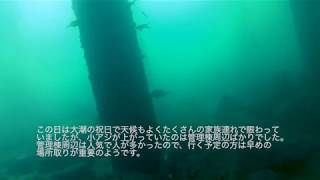 脇田海釣り桟橋にカメラ落としてみた! 北九州 若松 海釣り公園 2017.11.03