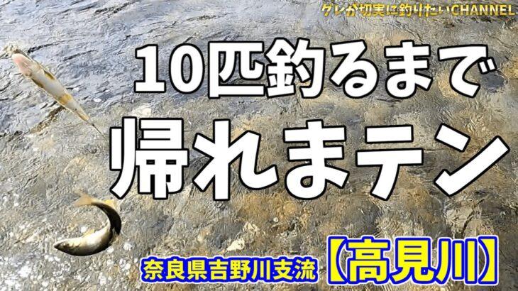 【鮎釣り#4】10匹釣るまで帰りません!2021年6月13日 吉野川支流【高見川】