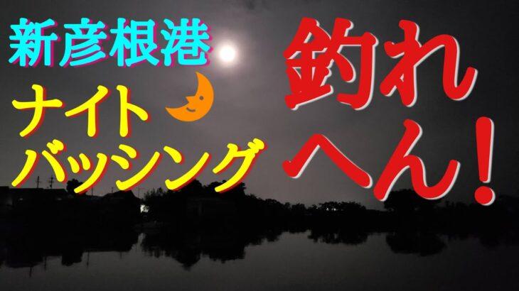 【バス釣り】新彦根港 ナイトバッシング 「釣れへん!」
