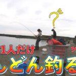 【糸魚川 サビキ釣り】誰も釣れていない堤防でサビキ釣り