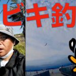 [初心者釣り日記] 今夜のおかずも浜名湖新居海釣り公園サビキでポン !  な初心者