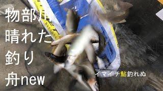 [鮎youtube] 畳鮎釣りin物部川 6/19