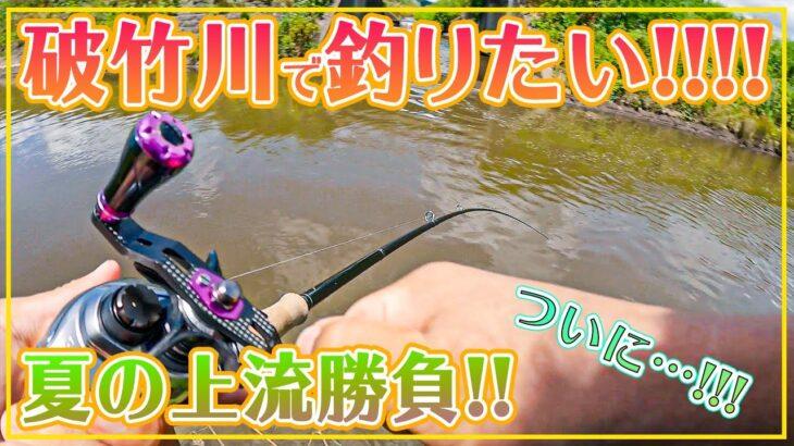 破竹川でブラックバスがどうしても釣りたい!夏の破竹川に挑む!!【3度目の正直】