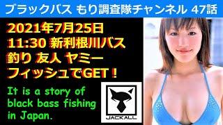 【バス釣り】47話 新利根川11:30釣れる!間に合う方!!