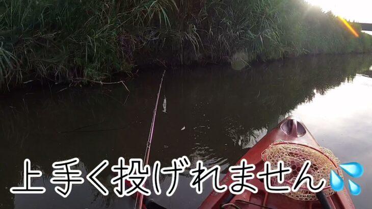 川でプカプカ【セビレ】で釣り #ラインスラック #セビレ #トップウォーター  7月24日