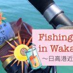 和歌山県釣り~日高港—堤防釣りpart2~